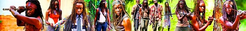 Michonne фото called Michonne Banner