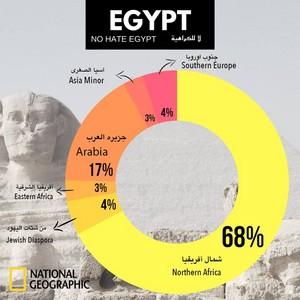 NO HATE EGYPT PEOPLE HATE U Squall Leonhart