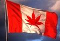 Oh Cannabis! - marijuana photo
