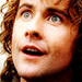 Pippin - pippin-took icon