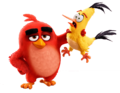 Red and Chuck - angry-birds photo