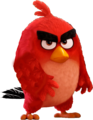 Red  - angry-birds photo