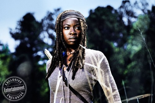 Michonne Обои entitled Season 8 Promotional Photoshoot