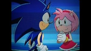 Sonic the Hedgehog Amy Rose