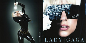 The Fame: Front Cover