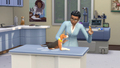 The Sims 4: Cats and mbwa