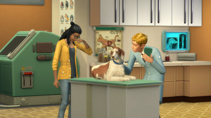 The Sims 4: chats and chiens