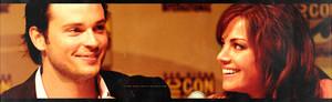Tomerica 2009 Comic Con [Banner]