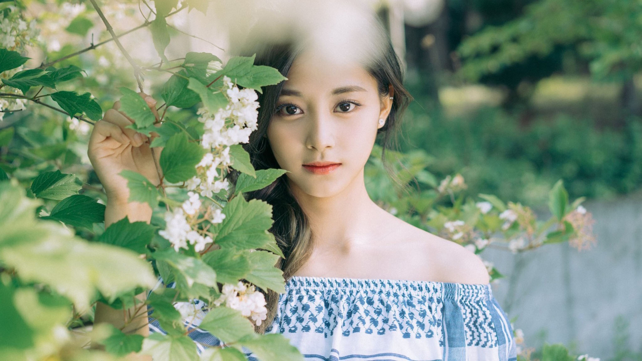 Twice Jyp Ent Images Tzuyu 06 Hd Wallpaper And Background Photos
