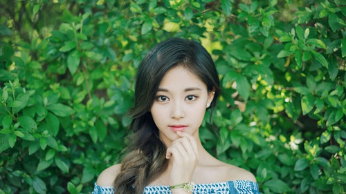 Twice (JYP Ent) Hintergrund entitled Tzuyu 3