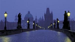 Vampires city