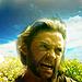 X Men Origins Wolverine - hugh-jackman-as-wolverine icon