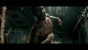 animali (music video)