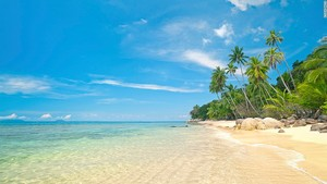 beaches beachhouses