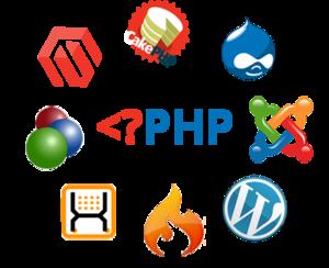 php developer 300x213