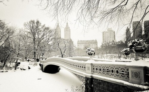Beautiful Things 壁纸 called Winter In New York