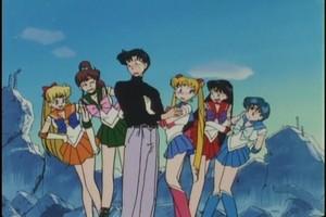 Mamoru And Sailor Scouts