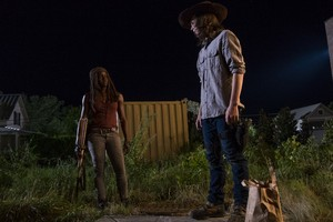 8x08 ~ How It's Gotta Be ~ Carl and Michonne
