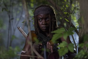 8x08 ~ How It's Gotta Be ~ Michonne
