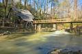 Alabama - united-states-of-america photo