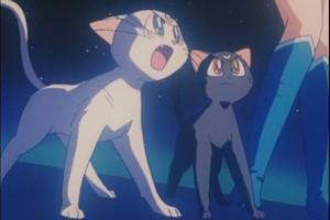 Artamas and Luna