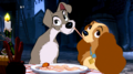 Bella Notte  - disneys-lady-and-the-tramp photo