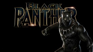 Black panter, panther 6b