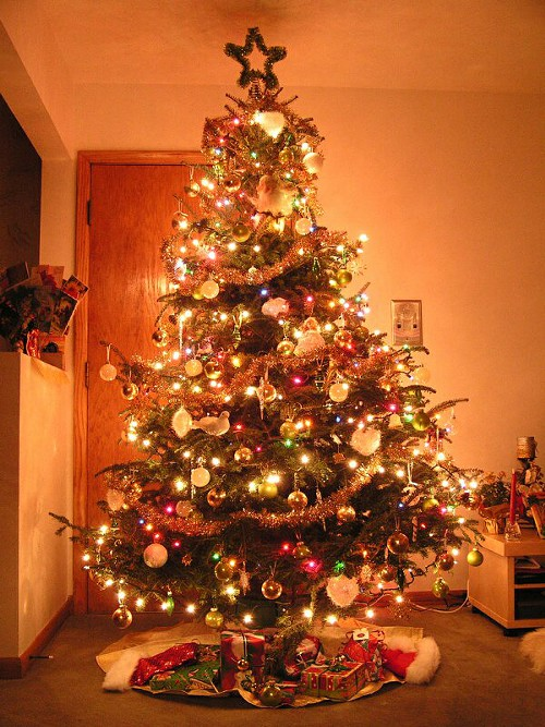 Christmas Tree\s All Over The World