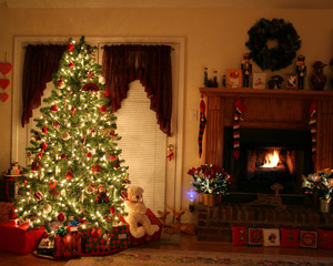 natal Tree\s All Over The World