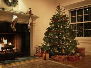 Krismas Tree\s All Over The World