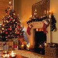 Christmas Tree\s All Over The World - christmas photo