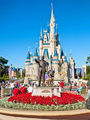 Disney World  - disney photo