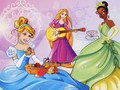 Disney Princesses - disney-princess photo