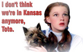 Don't think we are in Kansas - the-wizard-of-oz fan art