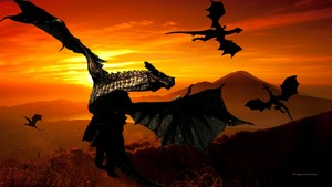 Dragon Sunset 1a