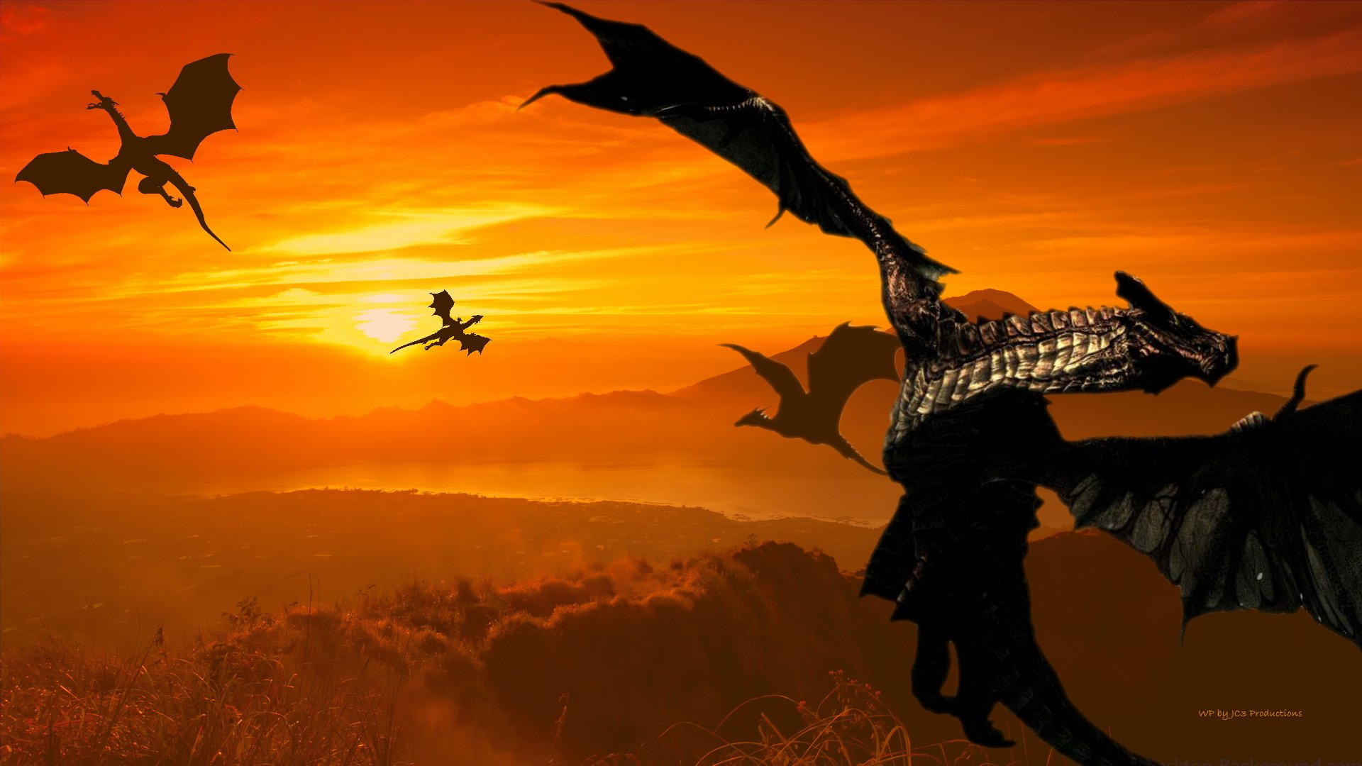 Sunset Dragon by CryoftheBeast on DeviantArt |Dragons And Sunsets