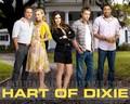 Hart of Dixie wallpaper - hart-of-dixie wallpaper