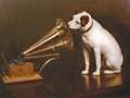His Master s Voice..jrt - random photo