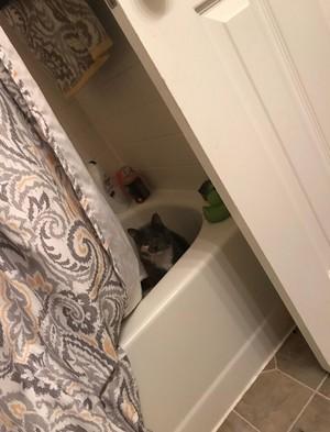 JADE in tub