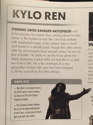 Kylo Ren - Visual Dictionary