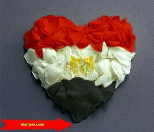 LONG LIVE LOVE EGYPT