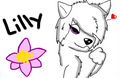 Lilly fanart (not mine) - alpha-and-omega fan art