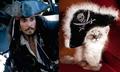 Male Celebrity vs. Cat 34 - cats photo