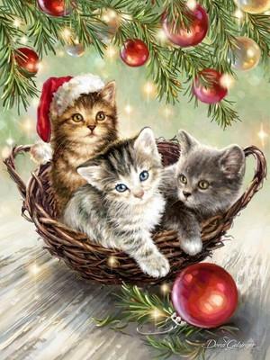 Merry Christmas Liana and Princess 🎄