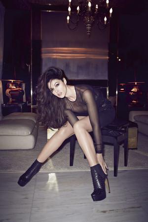 Monica Bellucci for 7000 Magazine [November 2013]