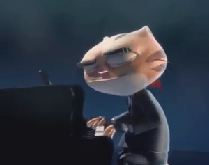 Mr. Cat plays the piano