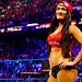 Nikki Bella - wwe-divas icon