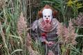 Pennywise from IT (2017) - horror-movies photo