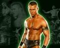 wwe - Randy Orton wallpaper