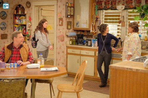 Roseanne karatasi la kupamba ukuta entitled Roseanne Revival - 10x01 - Twenty Years to Life - Dan, Harris, Darlene and Roseanne
